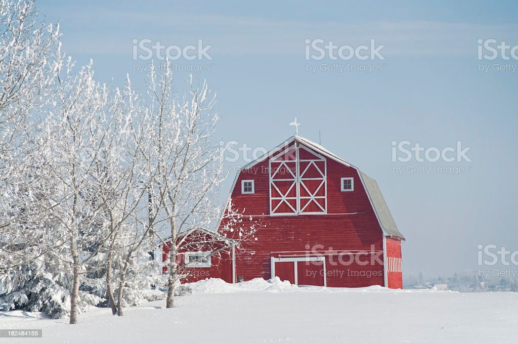 Winter Scene with Red Barn stock photo