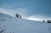 winter scene with snow and dark clouds, Paltinis area, Sibiu county, Romania