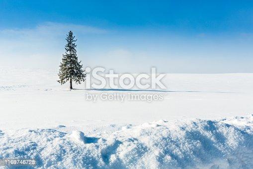 Biei Town, Cloud - Sky, Deep Snow, Hokkaido, Japan