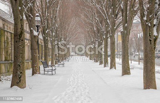 Beautiful, winter scenery with snow covered trees. Shot in Princeton, New Jersey