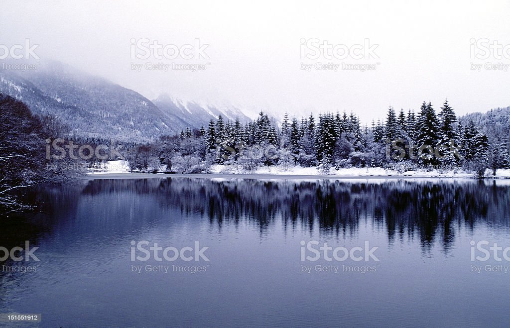 Winter scenery near Schloss Neuschwanstein. royalty-free stock photo