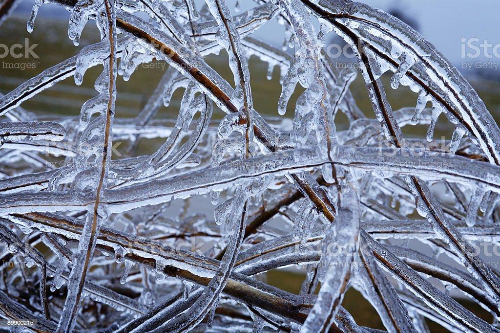 winter scenes - ice storm royalty-free stock photo
