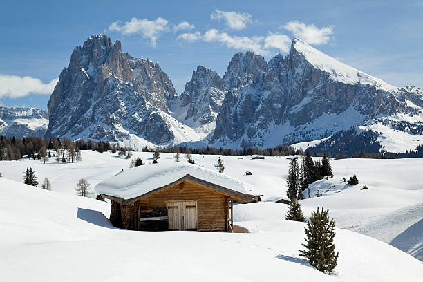Winter scenics with wooden shed and Langkofel mountain (Dolomites, Italy) stock photo