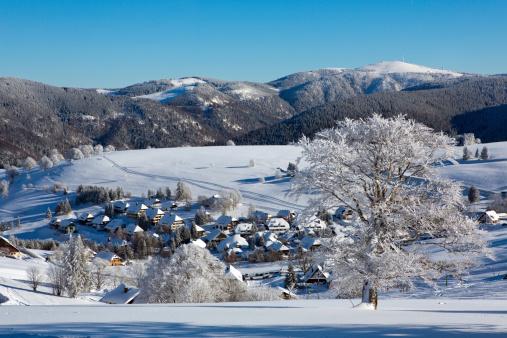Winter, Schnee, Frost, Baum, Schwarzwald, Deutschland, Schauinsland, Freiburg
