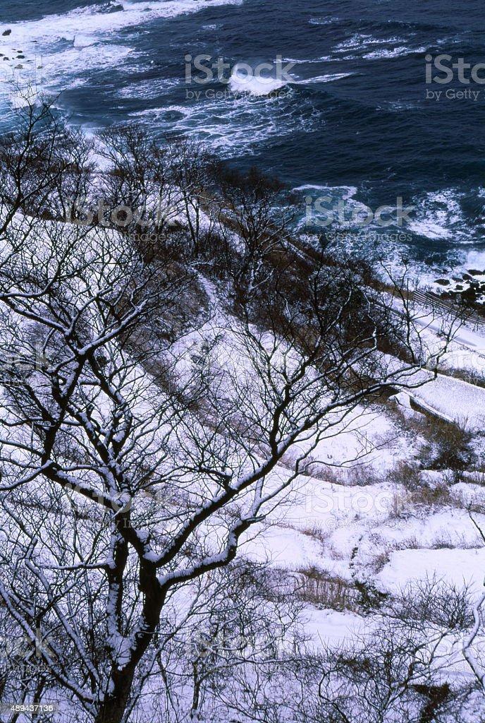 日本の冬の海の海岸 ロイヤリティフリーストックフォト