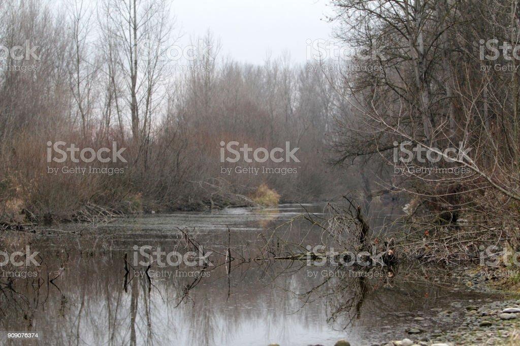 winter season in Ticino river stock photo
