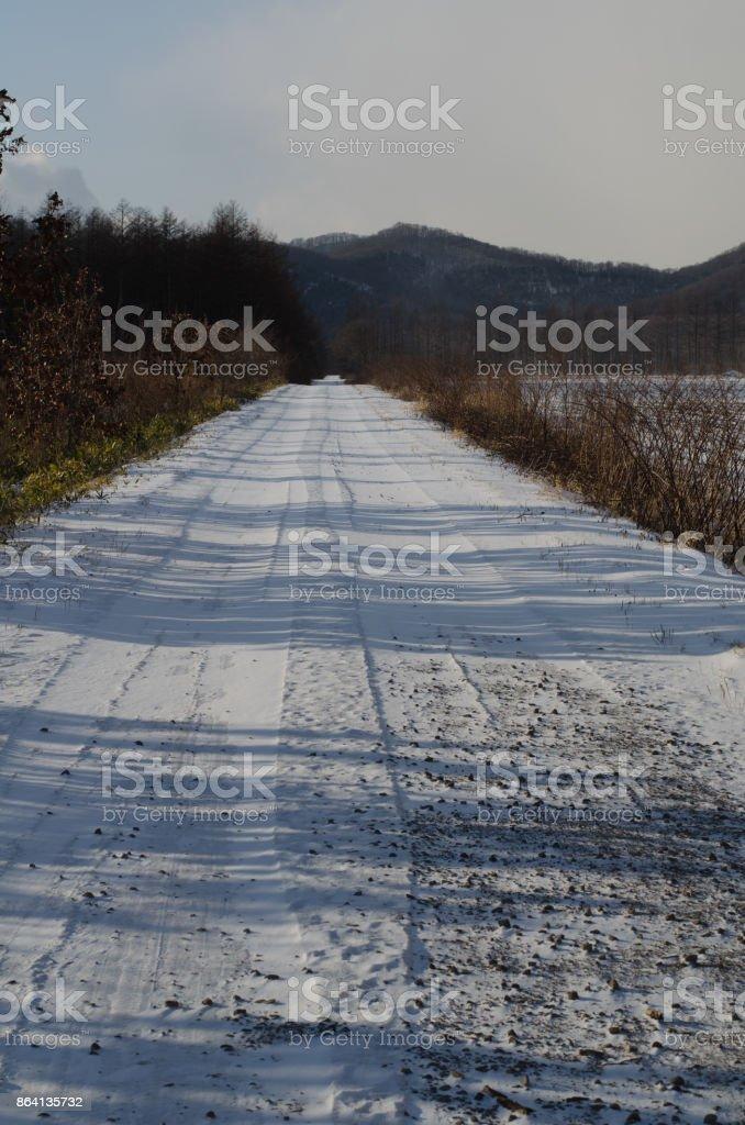 Winter season royalty-free stock photo