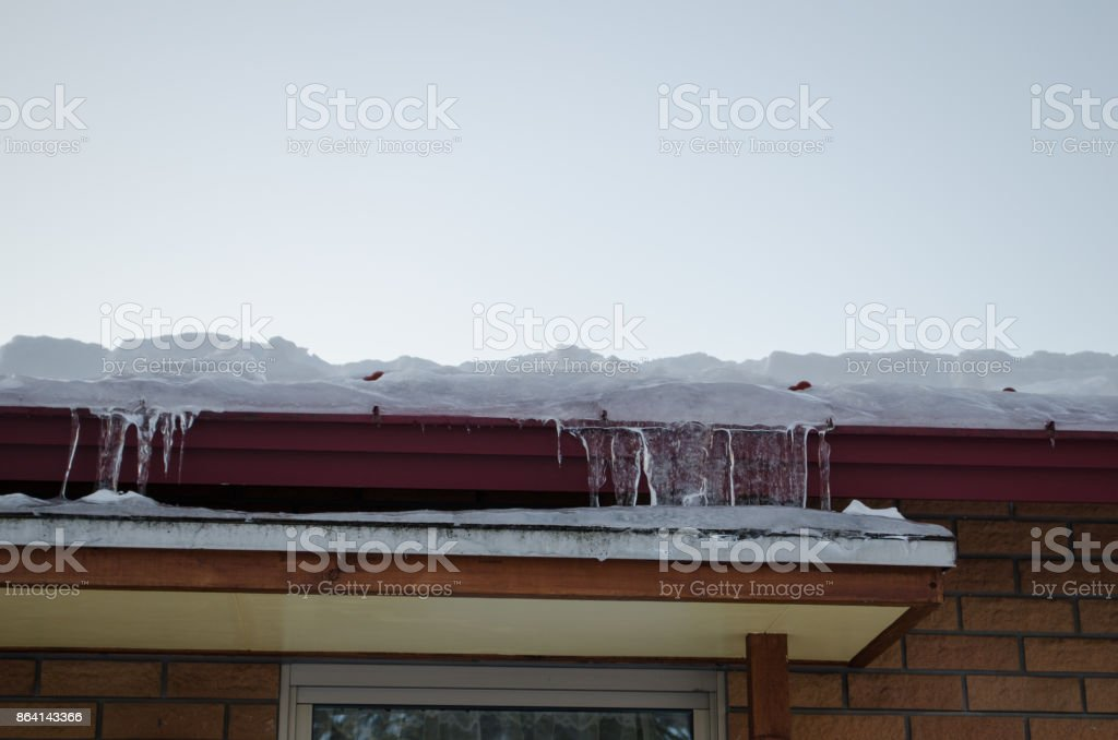 Winter season royalty-free stock photo
