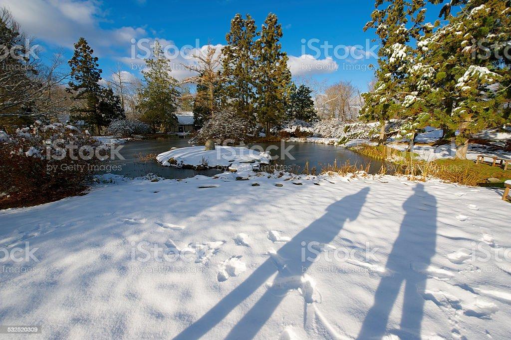 Winter-Shadowing-Garten Lizenzfreies stock-foto