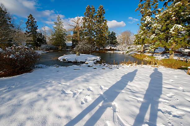 Winter-Shadowing-Garten – Foto