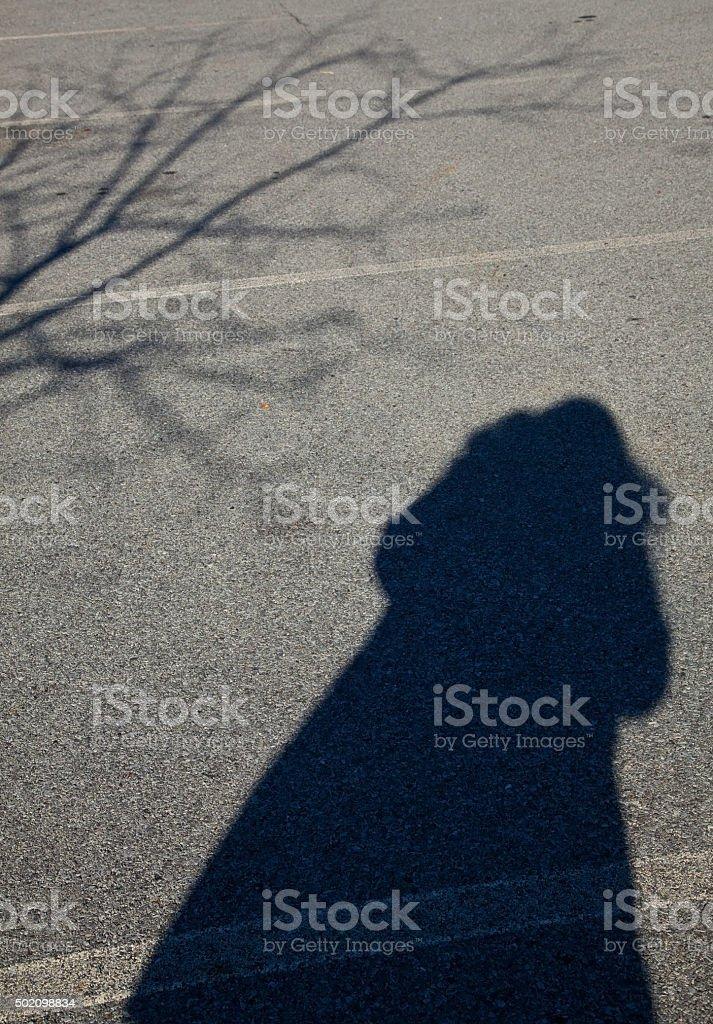 winter shadow stock photo
