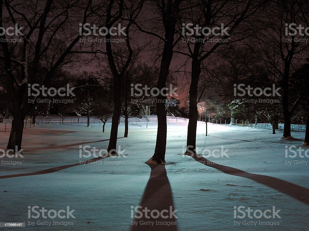 Winter Shadows royalty-free stock photo