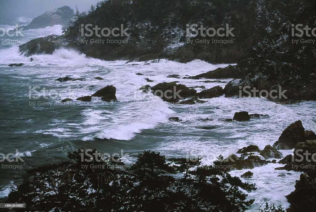 冬の海岸 ロイヤリティフリーストックフォト