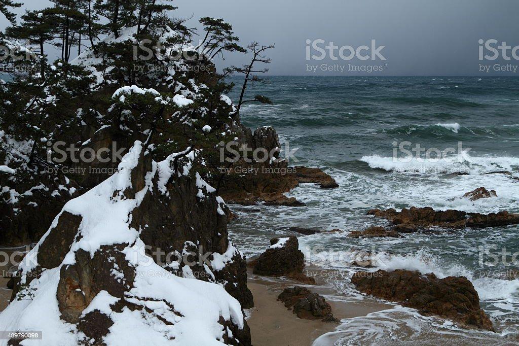冬の海岸 ストックフォト