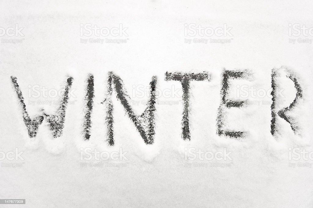 Winter-im Schnee – Foto