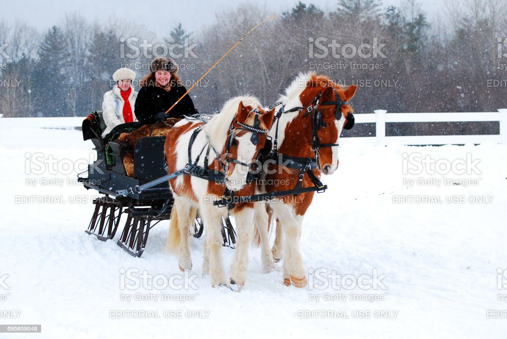 Winter Sleigh Ride stock photo
