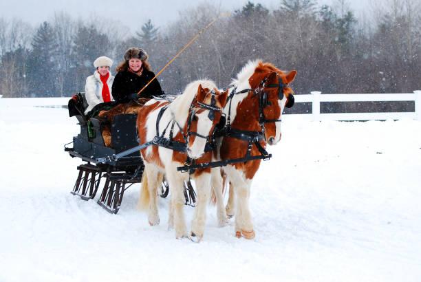schlitten fahren im winter - pferdekutsche stock-fotos und bilder