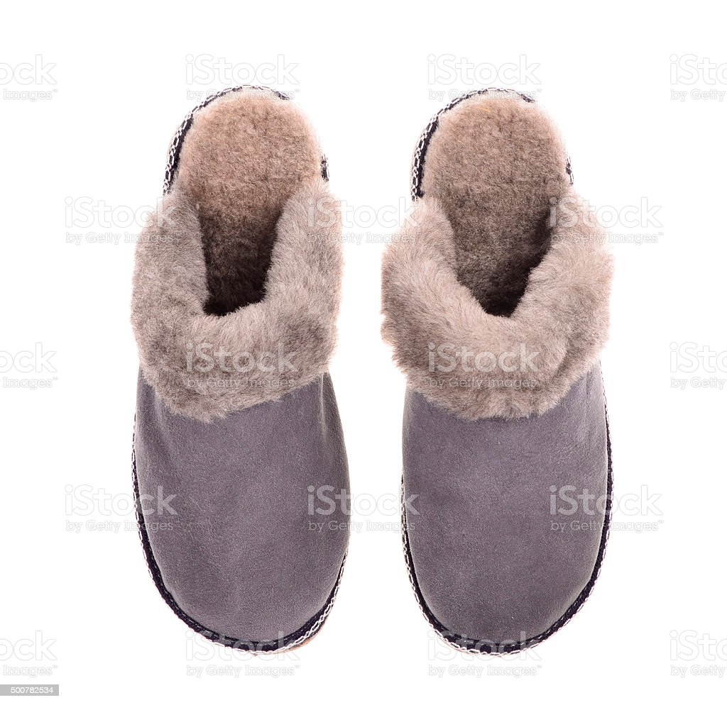 winter slipper stock photo