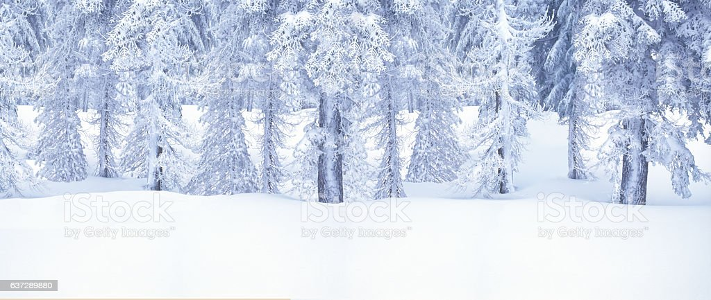 Winter Snow At Crater Lake National Park,Cascade Mountains,Orego stock photo