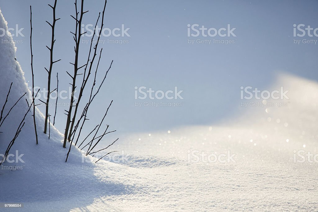 Fundo de neve do inverno foto royalty-free