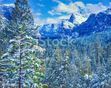 Winter In Yosemite National Park Above The Valley Floor
