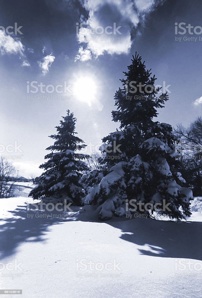 (1) Winter Snow royalty-free stock photo