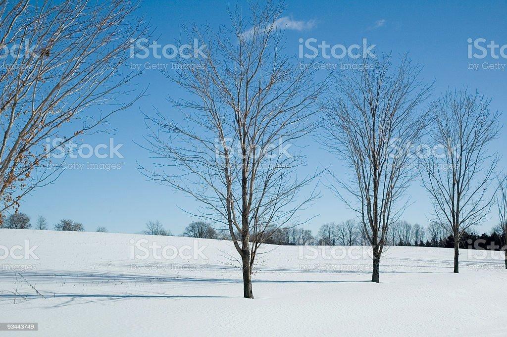 Winter Snow Motiv Lizenzfreies stock-foto