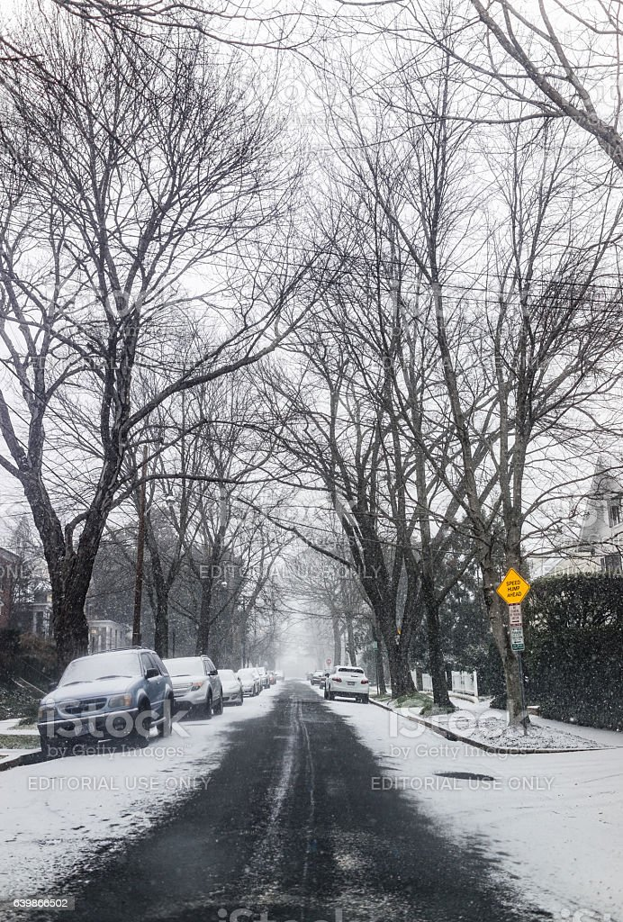 Winter snow storm on street with parked cars and trees stock photo