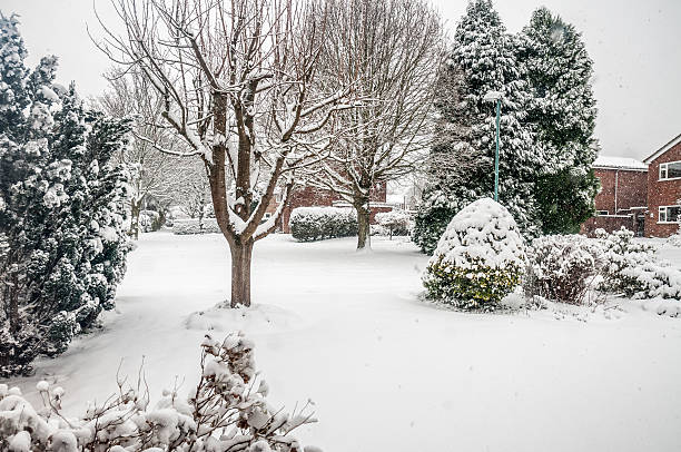 Winter Snow Storm stock photo