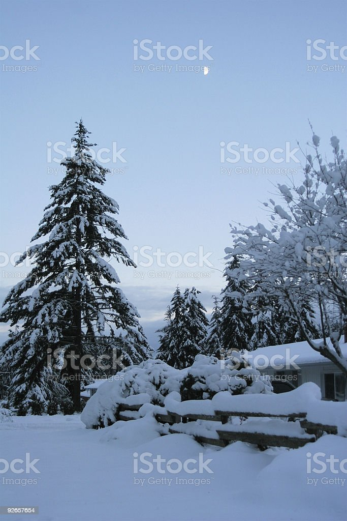 Winter Snow With Moon in Suburbs royalty-free stock photo