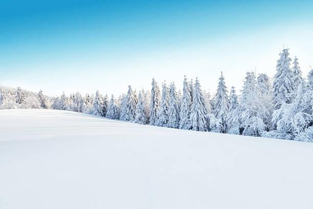 Winter snowy landscape picture id489083088?b=1&k=6&m=489083088&s=612x612&w=0&h=myz4db8yi0mfievcakyaowv6ulg1iy 8ayyn0kwgxie=