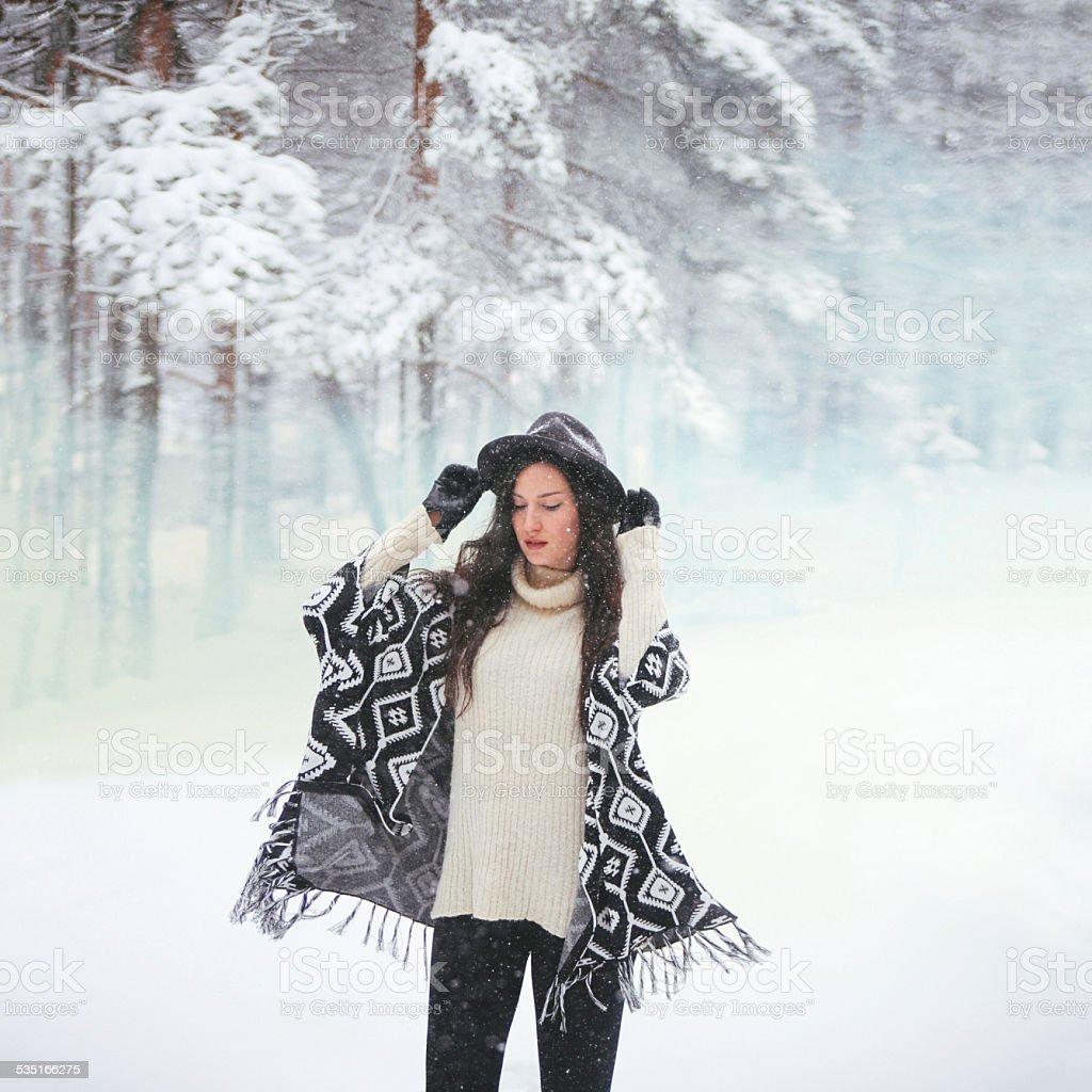Winter snowy portrait stock photo