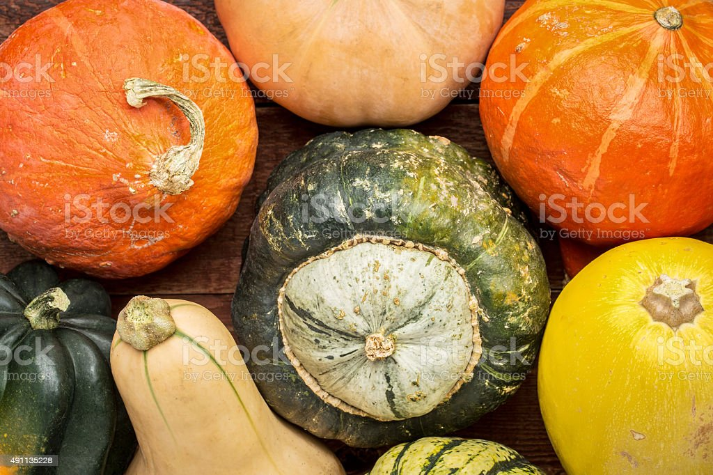 winter squash background stock photo