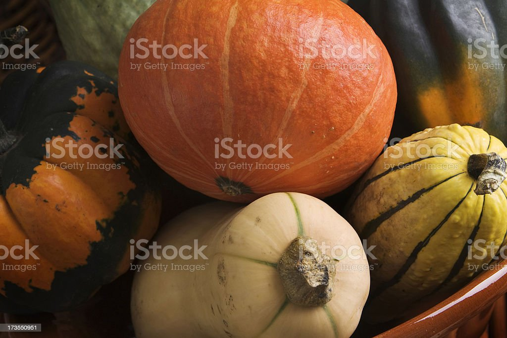 Winter Squash Close-up royalty-free stock photo