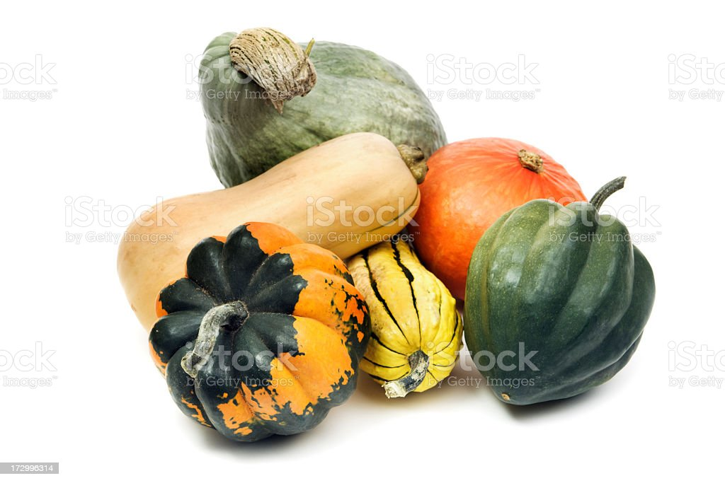 Winter Squash Gourd Family, Still Life Isolated on White Background royalty-free stock photo