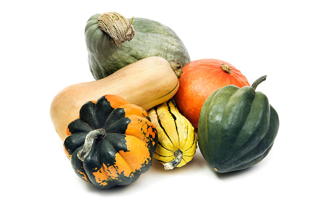 winter squash gourd family, still life isolated on white background - gourd stock photos and pictures