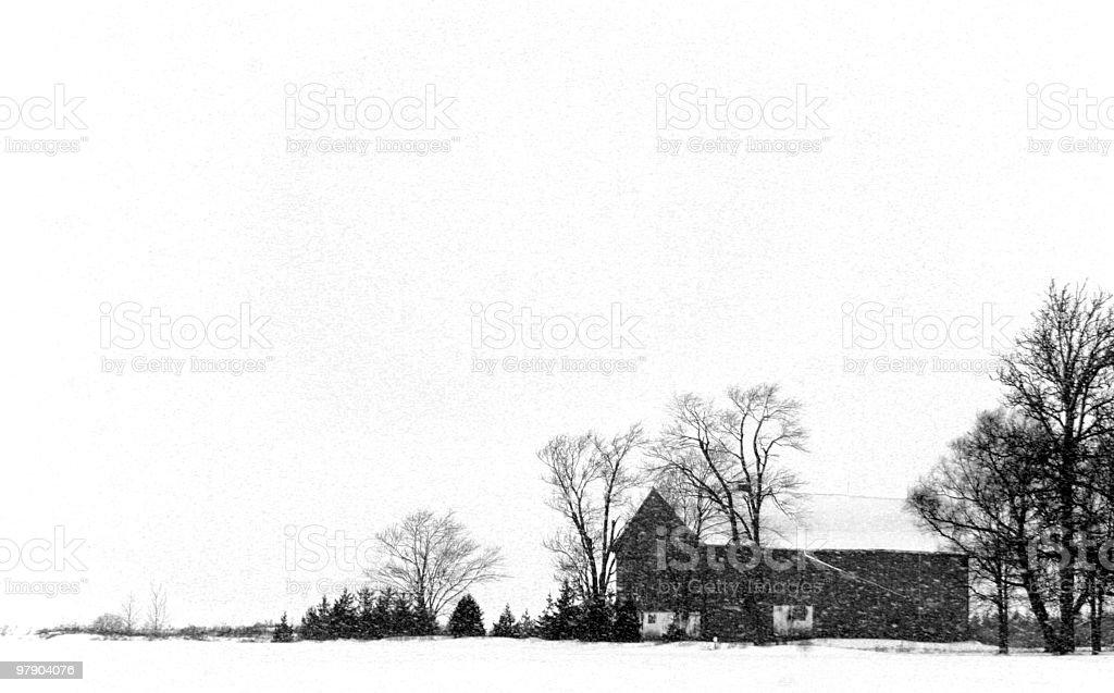 Winter Storm royalty-free stock photo