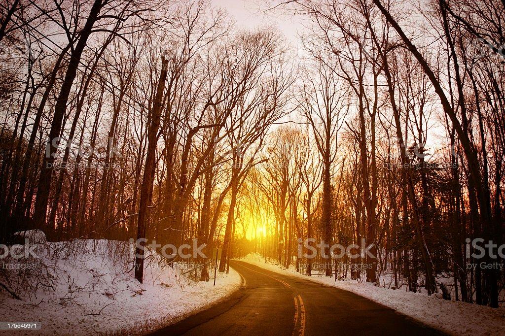 Winter Straight Road royalty-free stock photo