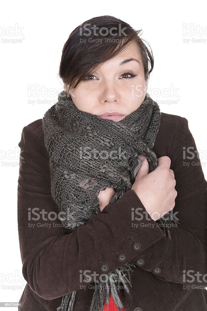 winter style royalty-free stock photo