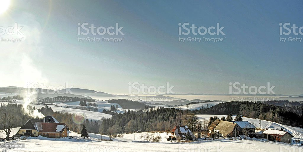 Winter sun in the Black Forest stock photo