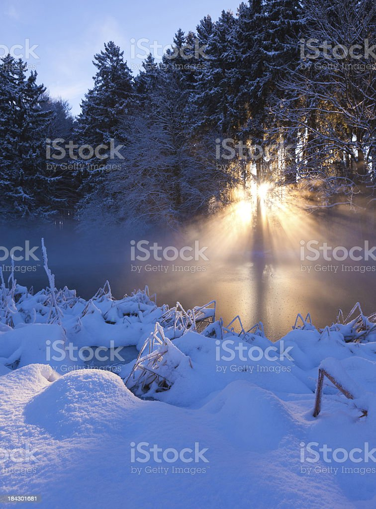 winter sunbeam on a small lake in bavaria, germany royalty-free stock photo