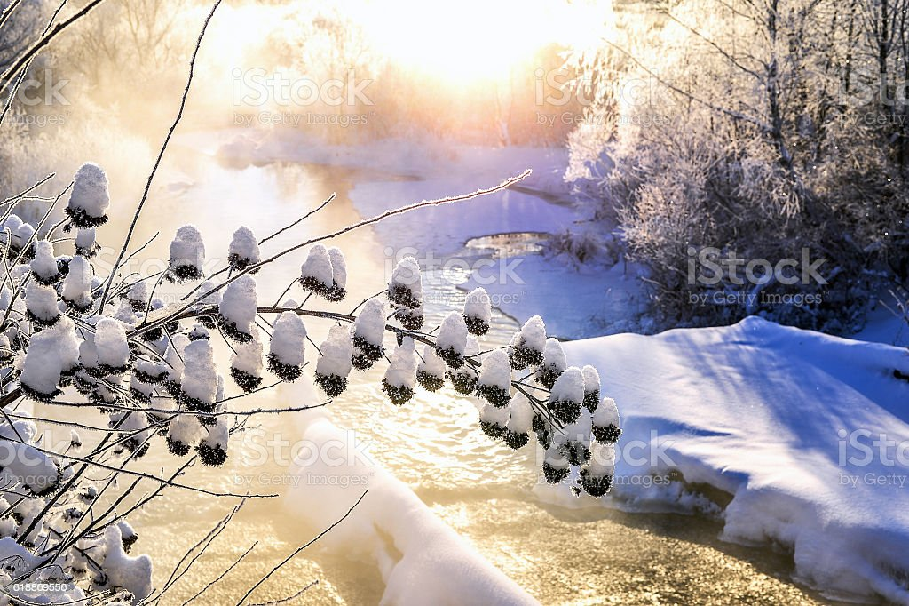 Winter sunny landscape with river and forest stock photo