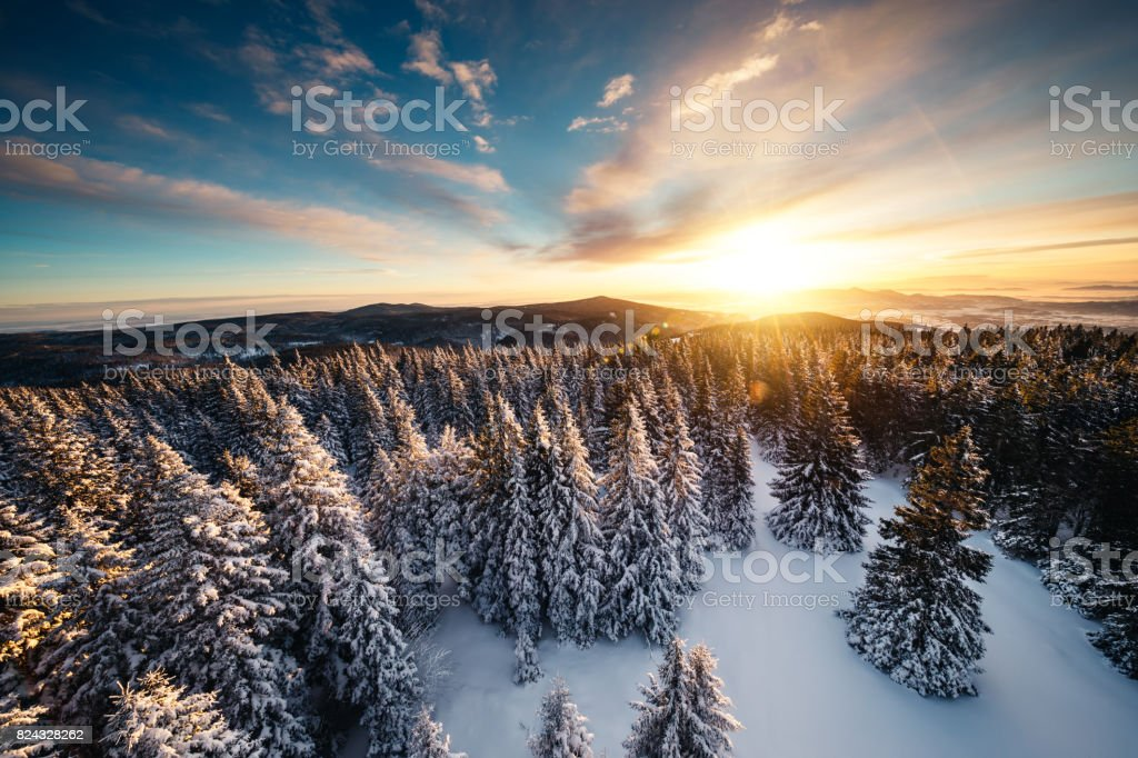 Winter Sunrise Above The Forest stock photo