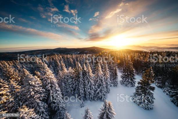 Photo of Winter Sunrise Above The Forest