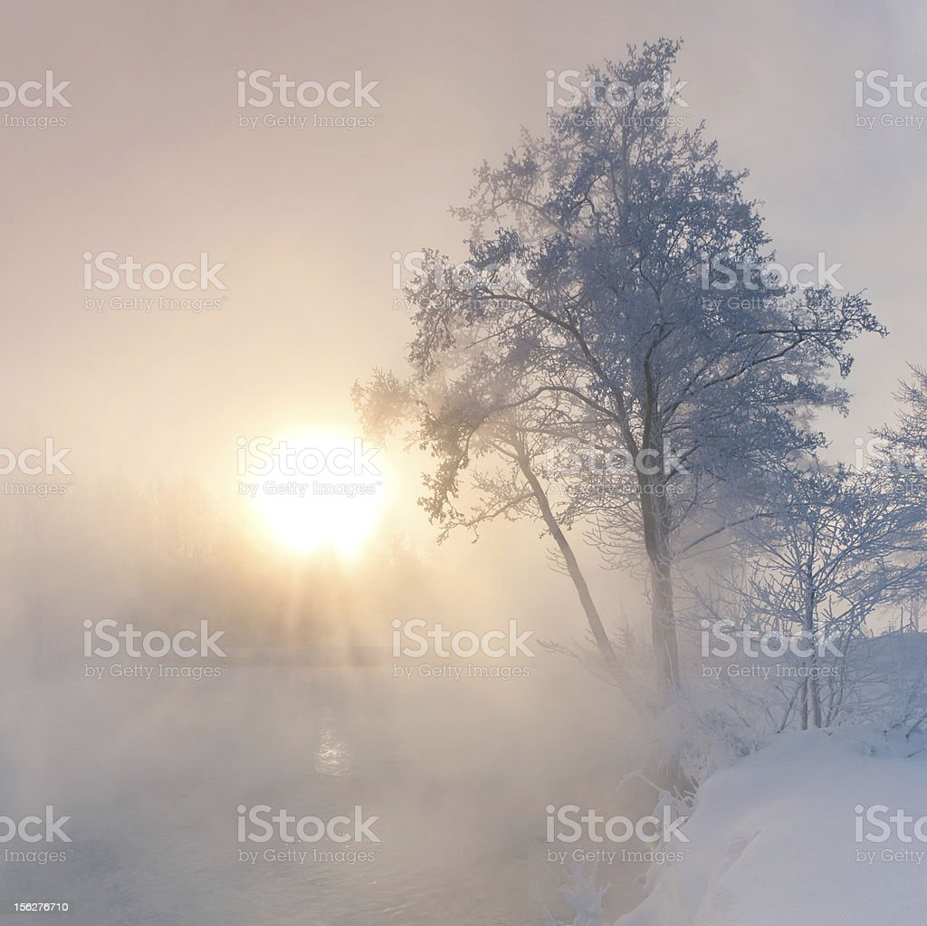 Winter sunrise over foggy river royalty-free stock photo