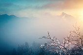Foggy landscape on a winter morning.