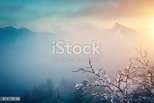 Foggy landscape on a winter morning.