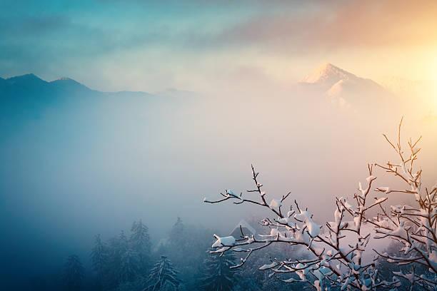 winter-sonnenaufgang - kalte sonne stock-fotos und bilder