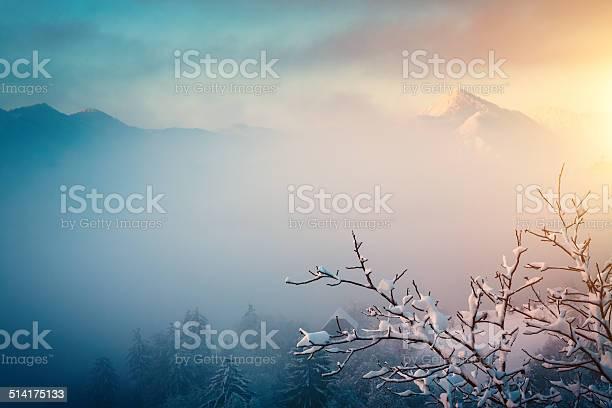 Photo of Winter Sunrise