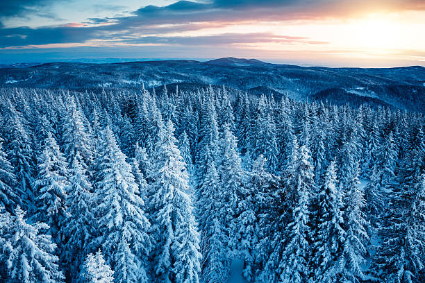 winter sunrise - snowy mountains stock photos and pictures